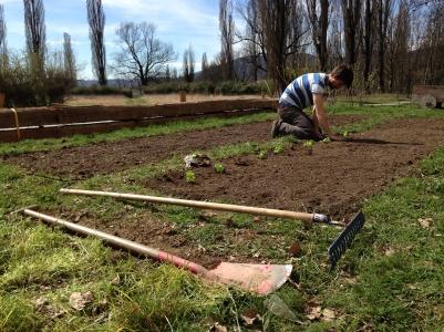 garden.lab_Reininghaus_02_kl